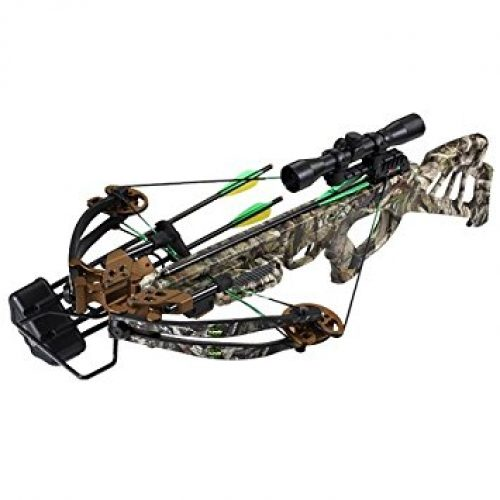 SA Sports Empire Beowulf 360 - Crossbow Review